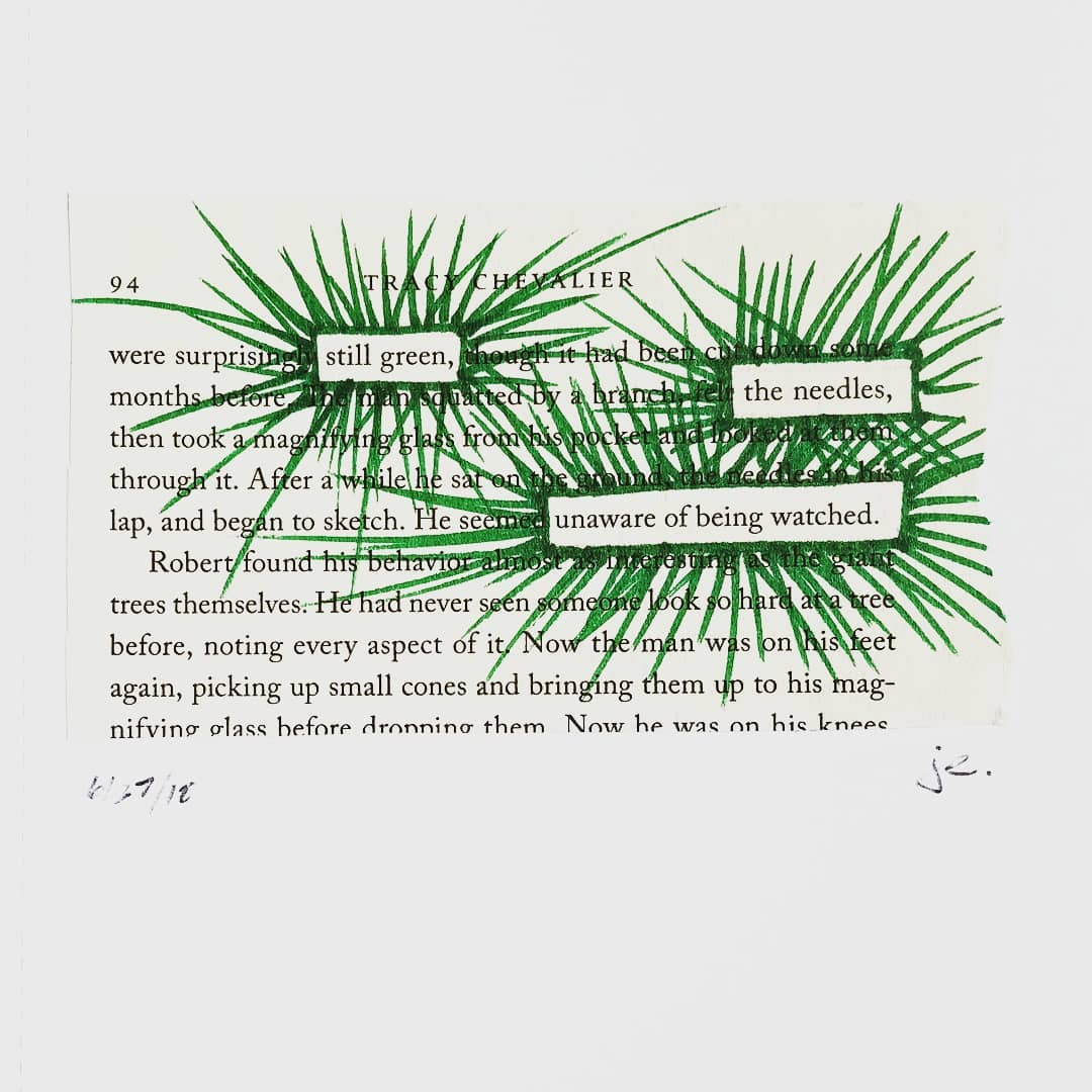 blackout poem: still green, the needles, unaware of being watched